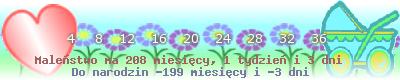 http://dziecko.haczewski.pl/suwaczek/2007/7/30/28.png