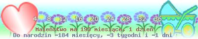 http://dziecko.haczewski.pl/suwaczek/2008/10/2/28.png