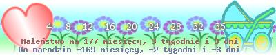 http://dziecko.haczewski.pl/suwaczek/2009/12/3/30.png