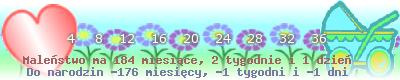 http://dziecko.haczewski.pl/suwaczek/2009/5/27/28.png